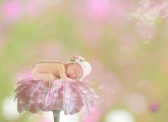 一岁宝宝睡前故事有哪些 怎样给宝宝讲睡前故事