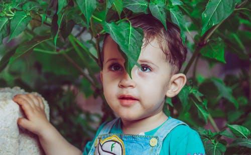 一岁宝宝吃什么 一岁宝宝的辅食有哪些