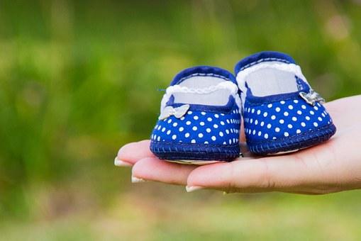 孕妇能喝枸杞茶吗 孕妇喝豆浆对胎儿好吗